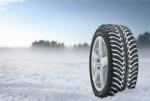 Какой марки лучше выбрать зимние шины – Какие зимние шины лучше выбрать для эксплуатации на различных дорожных покрытиях